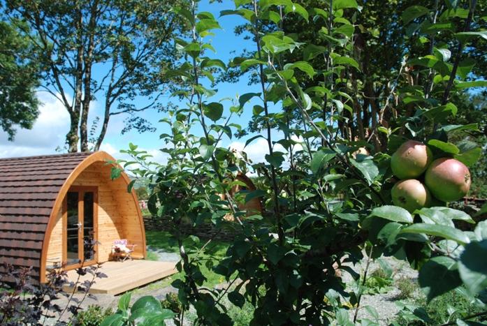 Orchard Luxury Pod